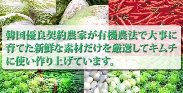 韓国の有機野菜